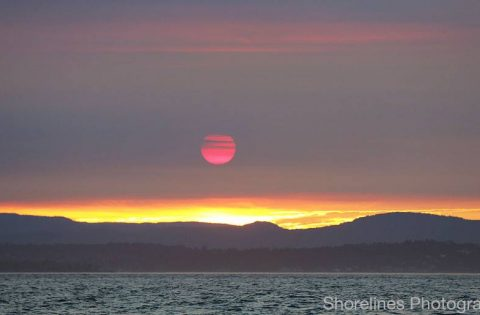 Moonlight Sunset on the Salish Sea