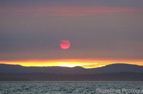 Moonlight Sunset on the Salish Sea
