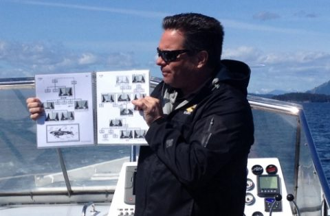 Captain Jeff making whale identifications