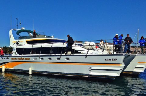 4 Ever Wild 50 passenger high performance open:covered boat