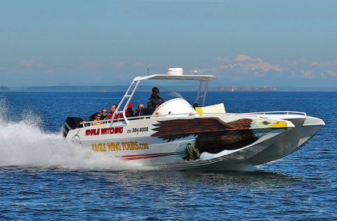 Eaglewing 12 passenger tour boat
