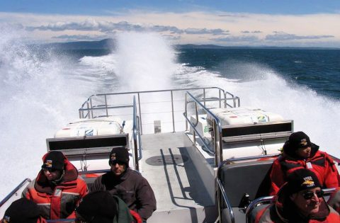 Exclusive high perfermance whale tour boats - photo Greg Kenmuir