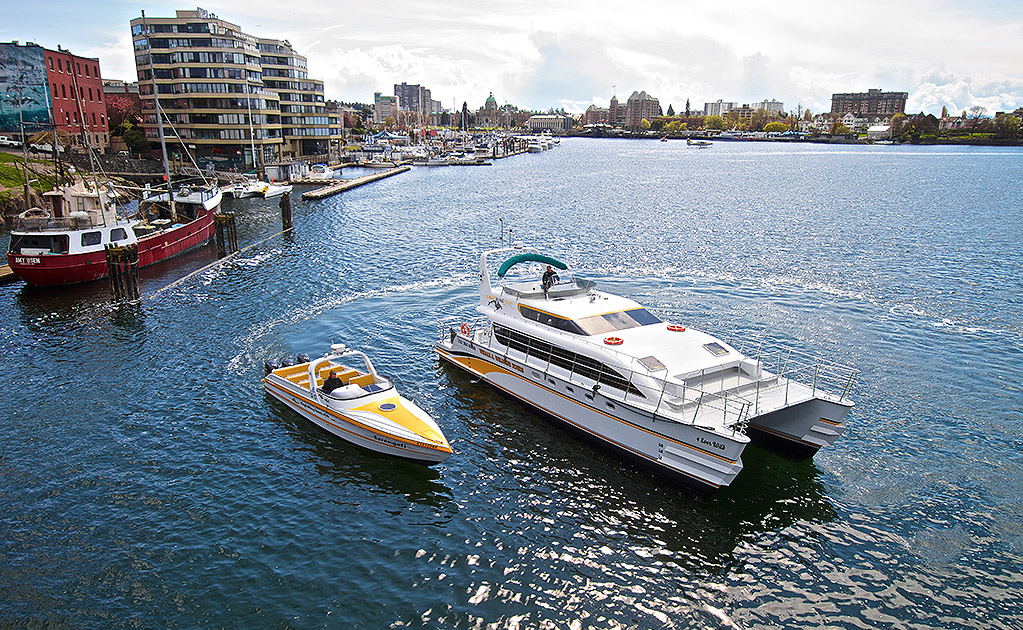 Two Eagle Wind whale watching boats in the Victoria harbour