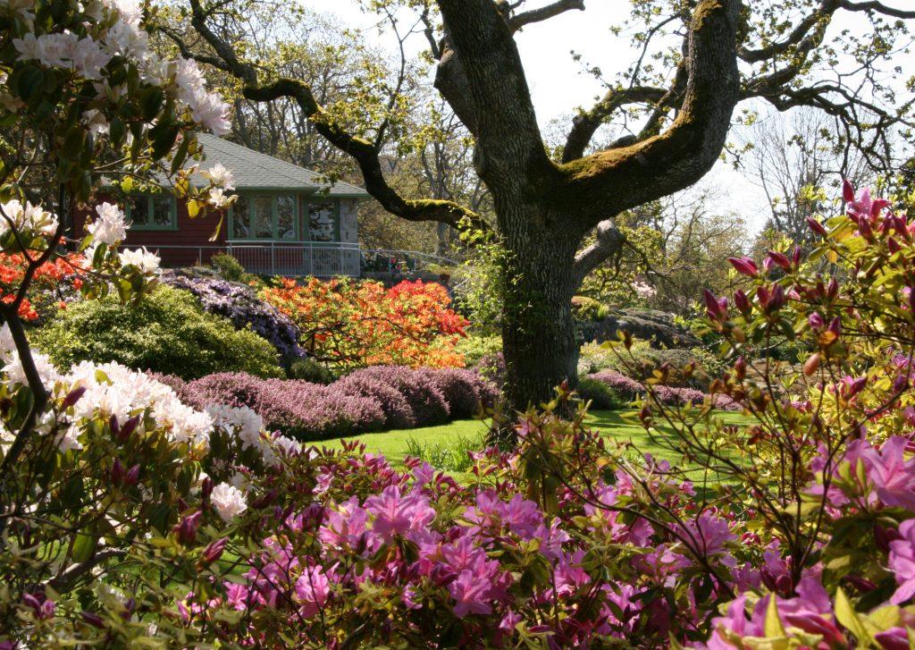 Abkhazi Garden